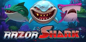 Recenzja Automatu Razor Shark