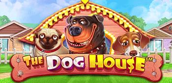 Funkcje Automatu The Dog House